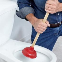 Harga Sedot WC Wringinanom Gresik
