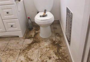Harga Sedot WC Balong Panggang Gresik