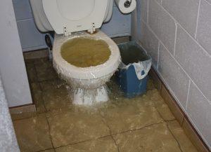 Harga Sedot WC Bangsal Mojokerto