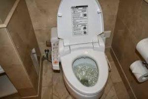 Harga Sedot WC Beji Pasuruan