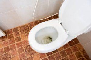 Closet atau wc sering mampet buntu ini alasannya