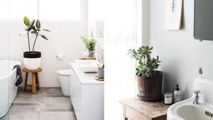 Pengharum kamar mandi dari bahan alami